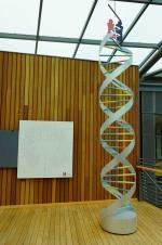 Pioneers of Disease-Oriented Population Genetics