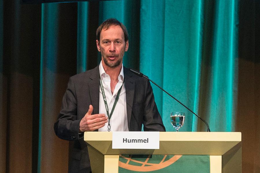 Prof. Dr. Michael Hummel